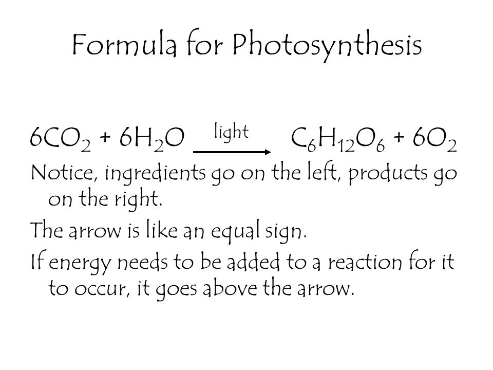 formula for photosythesis Home formulas  chemistry formulas  photosynthesis formula photosynthesis is a process where green plants use light energy, carbon dioxide, and water to produce glucose, oxygen.