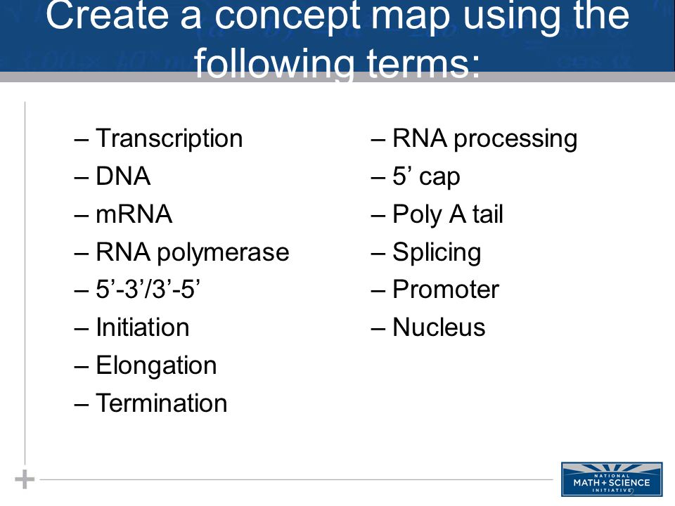 Translation Concept Map.Agenda 3 9 Transcription Warm Up Translation Notes Protein Synthesis