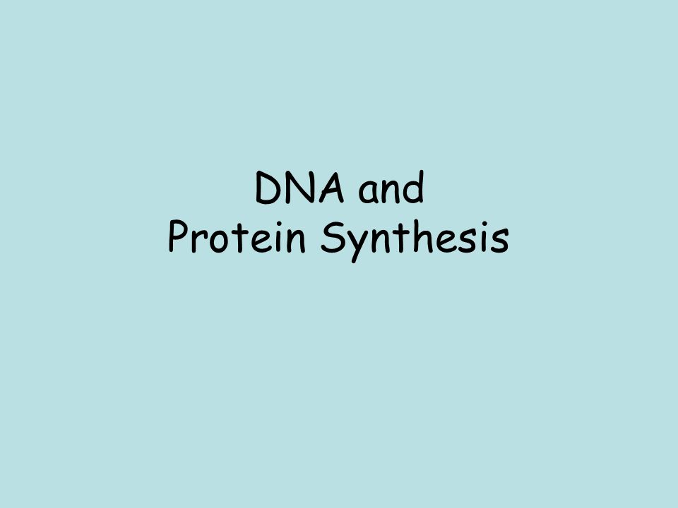 Biology benchmark ii review dna, protein synthesis, genetics.