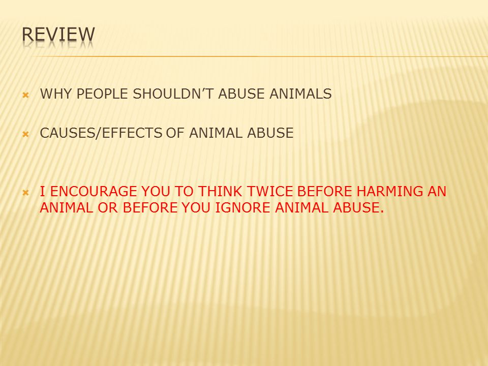 what are the effects of animal abuse