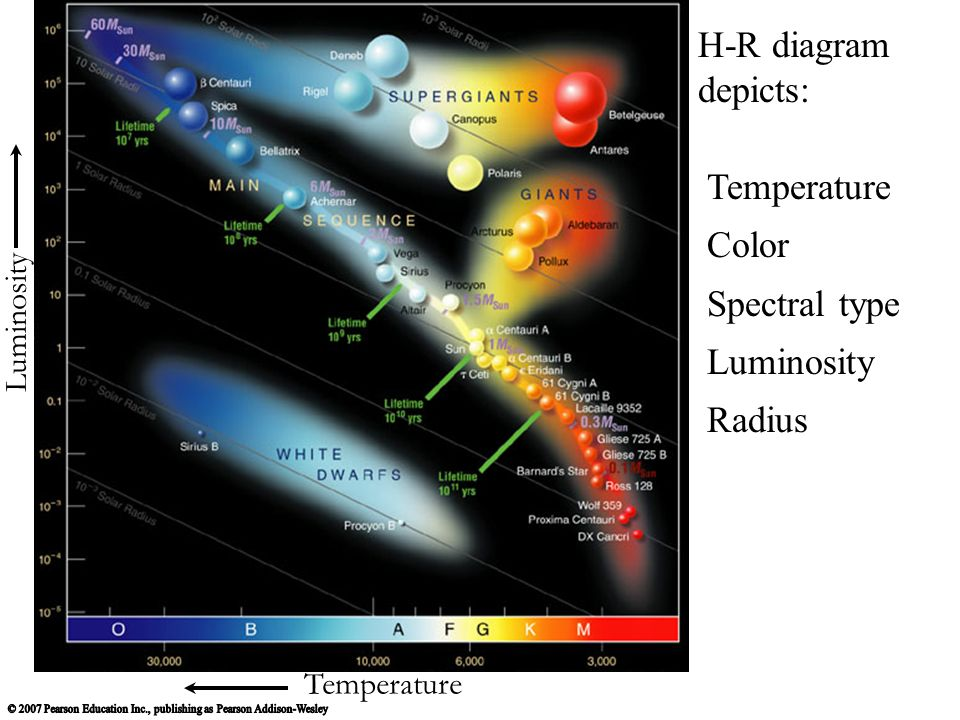 4 temperature luminosity h-r diagram depicts: temperature color spectral  type luminosity radius