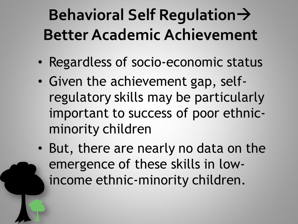 Low Income Childrens Self Regulation In >> Dallas Preschool Readiness Project What Is Self Regulation