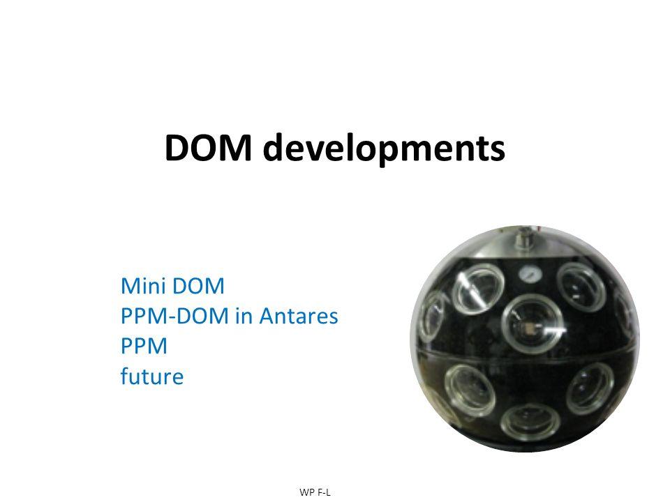 DOM developments Mini DOM PPM-DOM in Antares PPM future WP