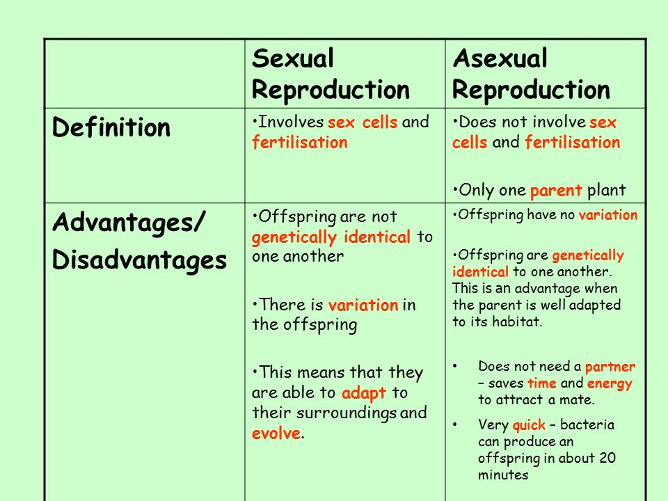 Partnership 2 advantages of asexual reproduction