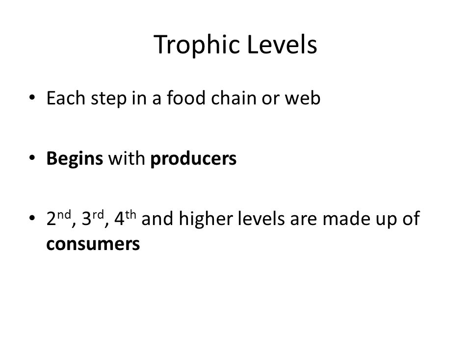 Trophic Levels Each step in a food chain or web Begins with producers 2 nd, 3 rd, 4 th and higher levels are made up of consumers