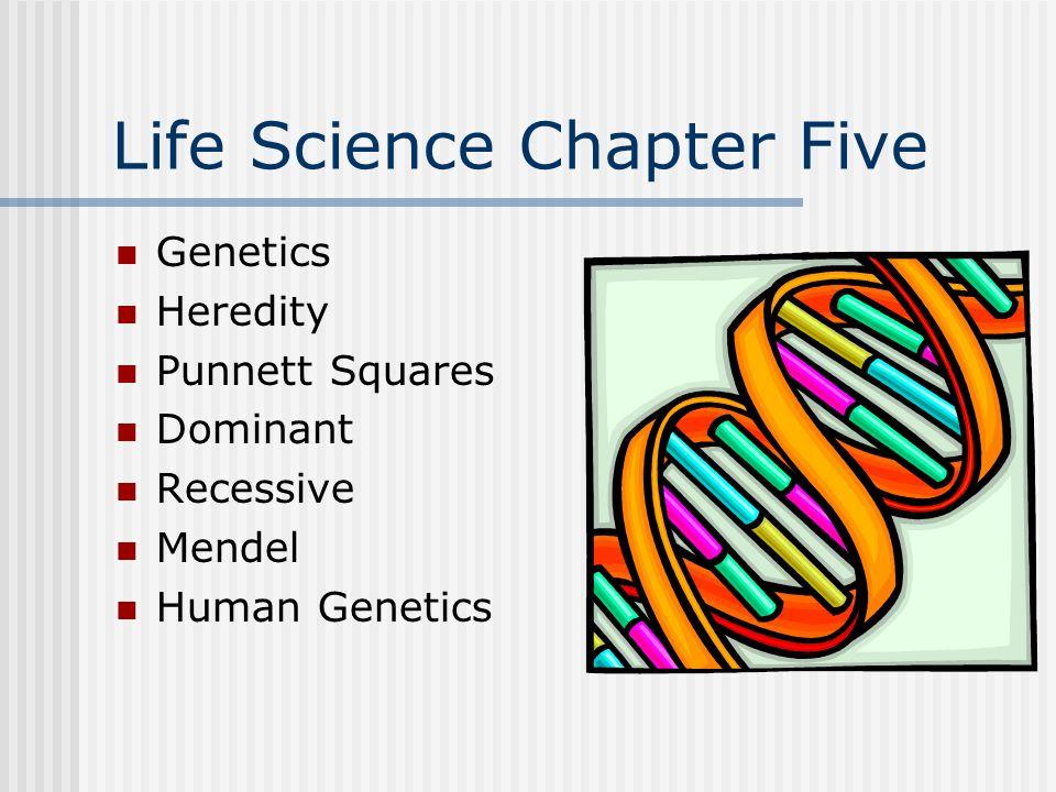 1 Life Science Chapter Five Genetics Heredity Punnett Squares Dominant Recessive Mendel Human