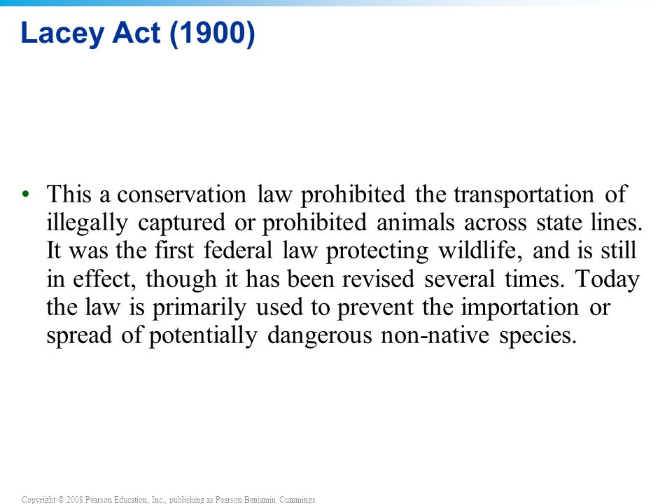Copyright © 2008 Pearson Education, Inc., publishing as Pearson Benjamin Cummings Lacey Act (1900) This a conservation law prohibited the transportation of illegally captured or prohibited animals across state lines.
