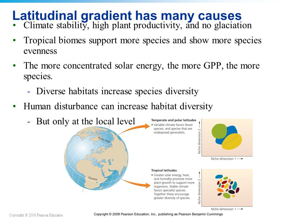 Copyright © 2008 Pearson Education, Inc., publishing as Pearson Benjamin Cummings Latitudinal gradient has many causes Climate stability, high plant productivity, and no glaciation Tropical biomes support more species and show more species evenness The more concentrated solar energy, the more GPP, the more species.