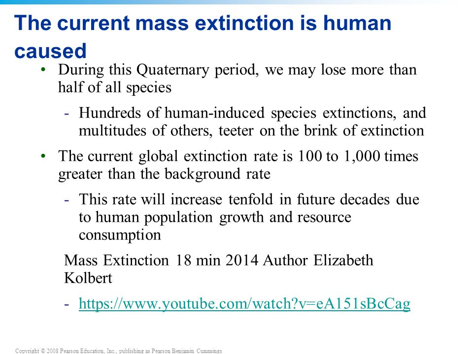 The current mass extinction is human caused During this Quaternary period, we may lose more than half of all species -Hundreds of human-induced species extinctions, and multitudes of others, teeter on the brink of extinction The current global extinction rate is 100 to 1,000 times greater than the background rate -This rate will increase tenfold in future decades due to human population growth and resource consumption Mass Extinction 18 min 2014 Author Elizabeth Kolbert -https://www.youtube.com/watch v=eA151sBcCaghttps://www.youtube.com/watch v=eA151sBcCag