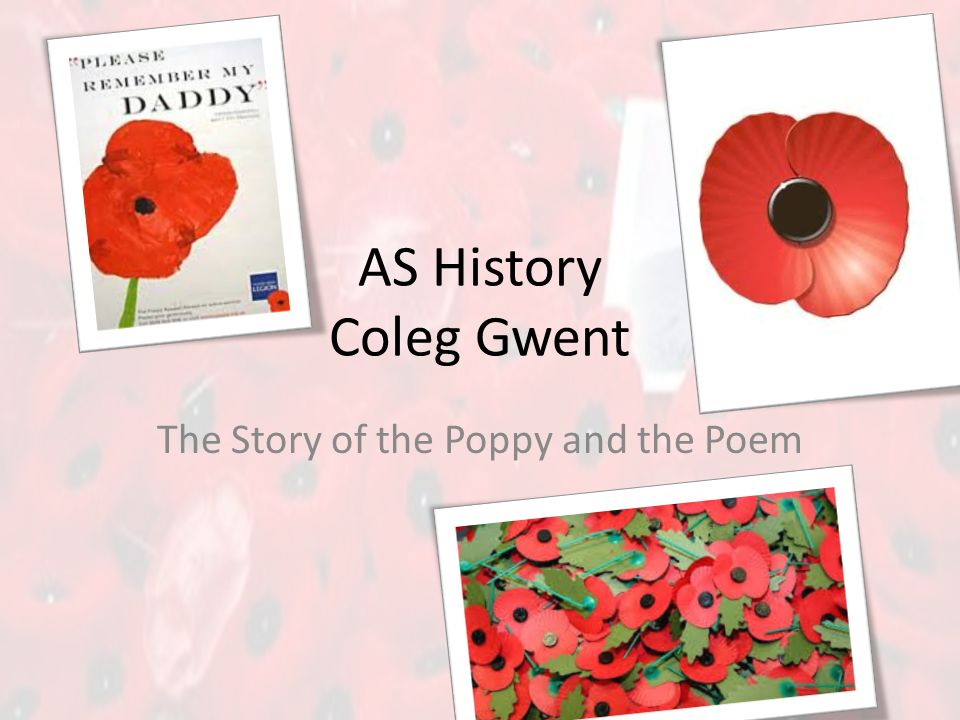 As history coleg gwent the story of the poppy and the poem ppt 1 as history coleg gwent the story of the poppy and the poem mightylinksfo