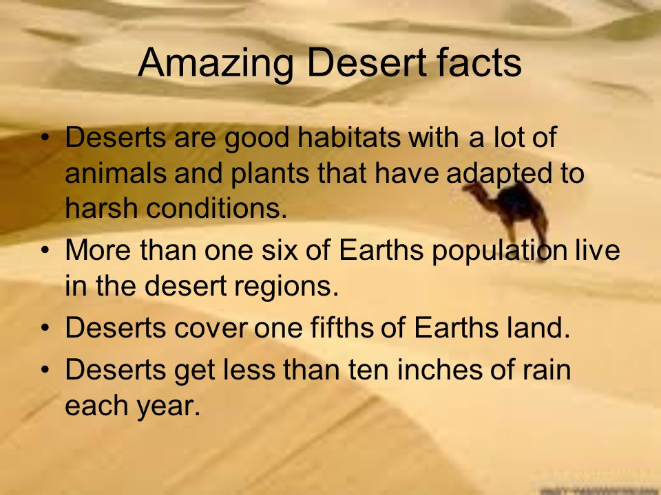Amazing Desert Facts Deserts Are Good Habitats With A Lot Of Animals And Plants That Have