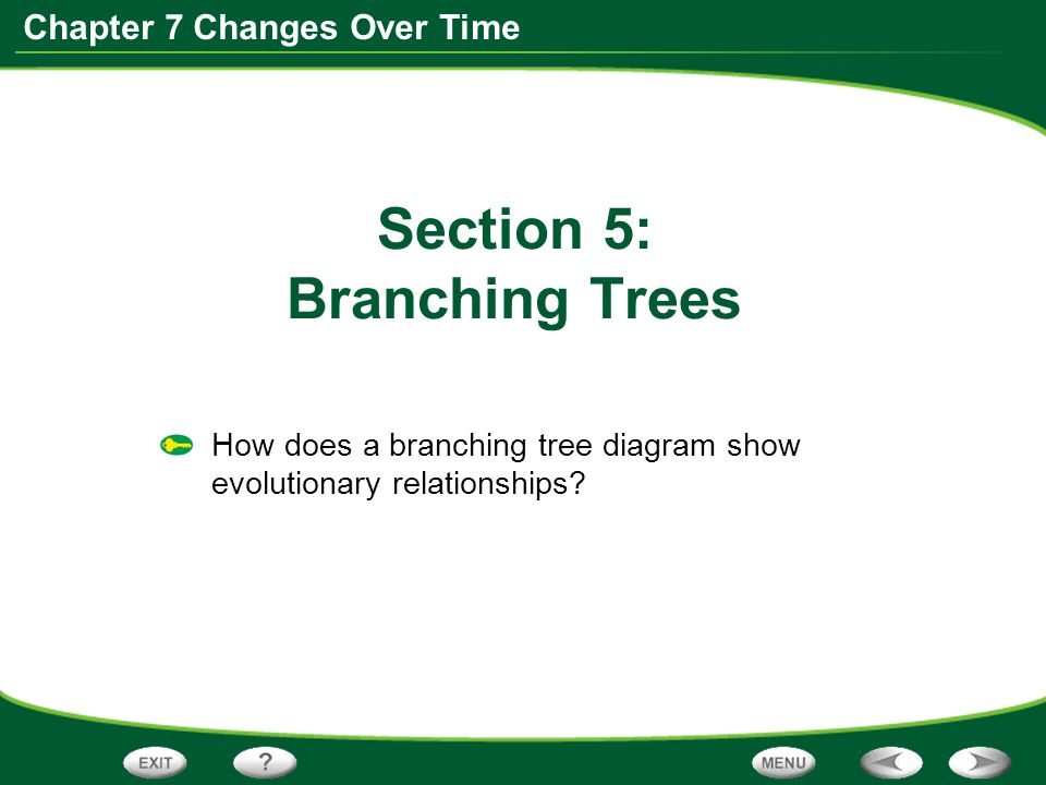 Chapter 7 Changes Over Time Table Of Contents 75 Branching Trees