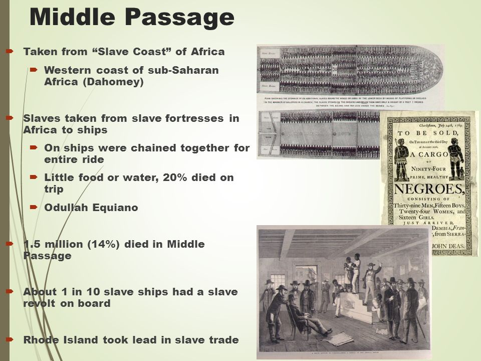 Middle Passage  Taken from Slave Coast of Africa  Western coast of sub-Saharan Africa (Dahomey)  Slaves taken from slave fortresses in Africa to ships  On ships were chained together for entire ride  Little food or water, 20% died on trip  Odullah Equiano  1.5 million (14%) died in Middle Passage  About 1 in 10 slave ships had a slave revolt on board  Rhode Island took lead in slave trade