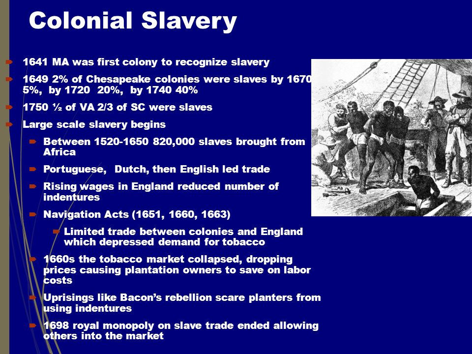 Colonial Slavery  1641 MA was first colony to recognize slavery  1649 2% of Chesapeake colonies were slaves by 1670 5%, by 1720 20%, by 1740 40%  1750 ½ of VA 2/3 of SC were slaves  Large scale slavery begins  Between 1520-1650 820,000 slaves brought from Africa  Portuguese, Dutch, then English led trade  Rising wages in England reduced number of indentures  Navigation Acts (1651, 1660, 1663)  Limited trade between colonies and England which depressed demand for tobacco  1660s the tobacco market collapsed, dropping prices causing plantation owners to save on labor costs  Uprisings like Bacon's rebellion scare planters from using indentures  1698 royal monopoly on slave trade ended allowing others into the market