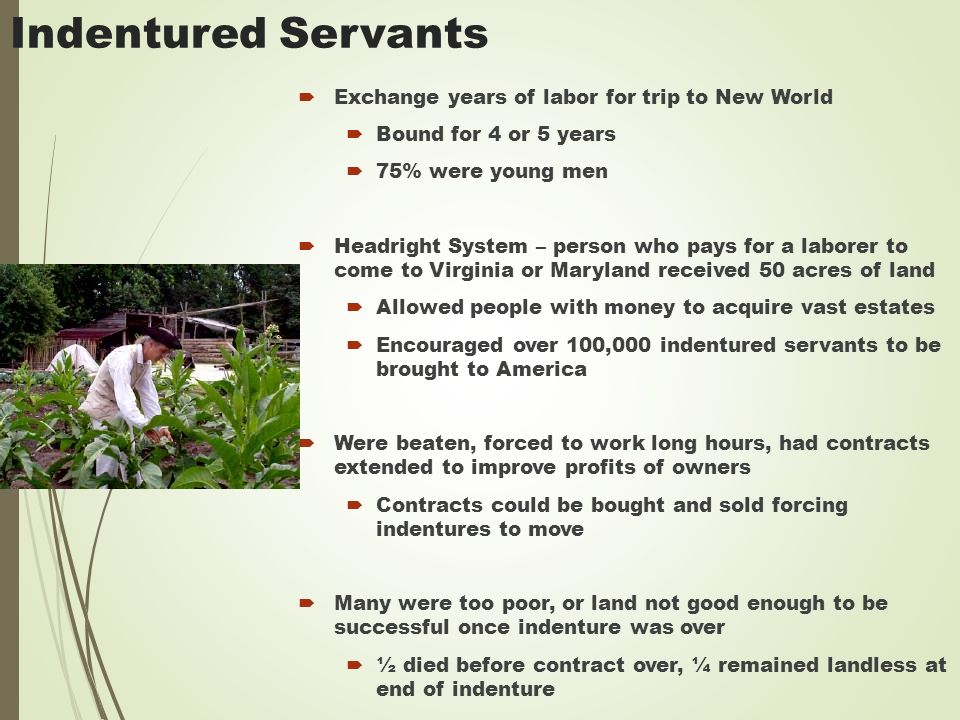 Indentured Servants  Exchange years of labor for trip to New World  Bound for 4 or 5 years  75% were young men  Headright System – person who pays for a laborer to come to Virginia or Maryland received 50 acres of land  Allowed people with money to acquire vast estates  Encouraged over 100,000 indentured servants to be brought to America  Were beaten, forced to work long hours, had contracts extended to improve profits of owners  Contracts could be bought and sold forcing indentures to move  Many were too poor, or land not good enough to be successful once indenture was over  ½ died before contract over, ¼ remained landless at end of indenture
