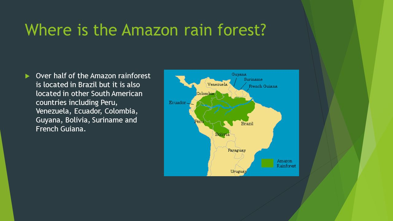 Amazon Rainforest Location On World Map on south american rainforest, geographical map of the amazon rainforest, venezuela amazon rainforest, world map amazon rainforest, bolivia amazon rainforest, maps of north america in the amazon rainforest, map of central and south america and rainforest, map of south america amazon river, countries amazon rainforest, current events amazon rainforest, africa amazon rainforest, chile amazon rainforest, map of south america amazon basin, brazil amazon rainforest, map of amazon amazon rain forest and river, peru amazon rainforest,