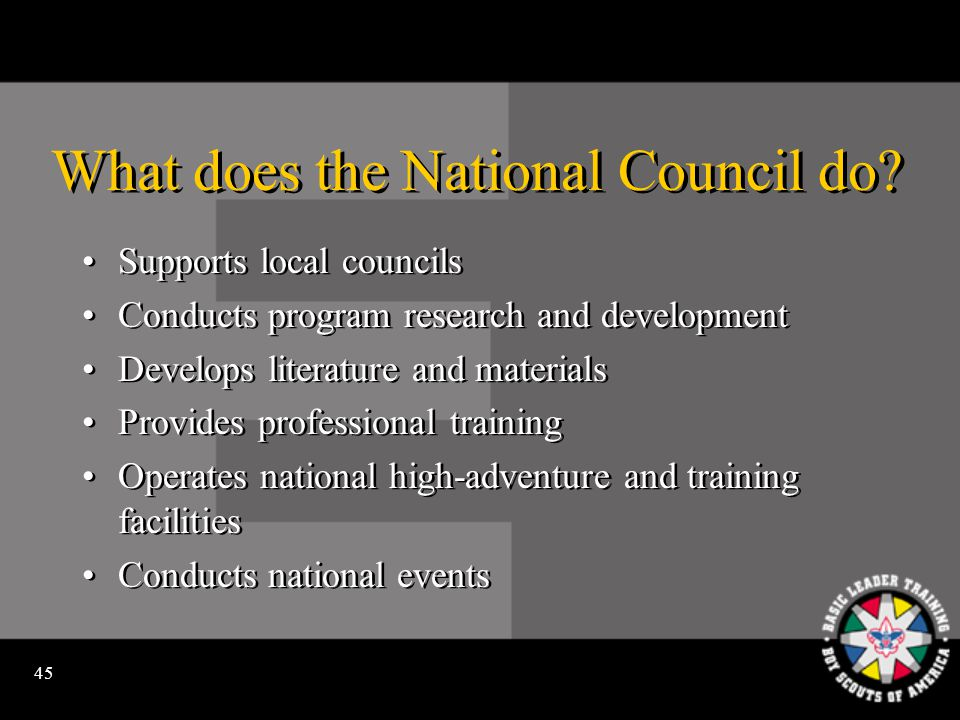44 What does the council provide.