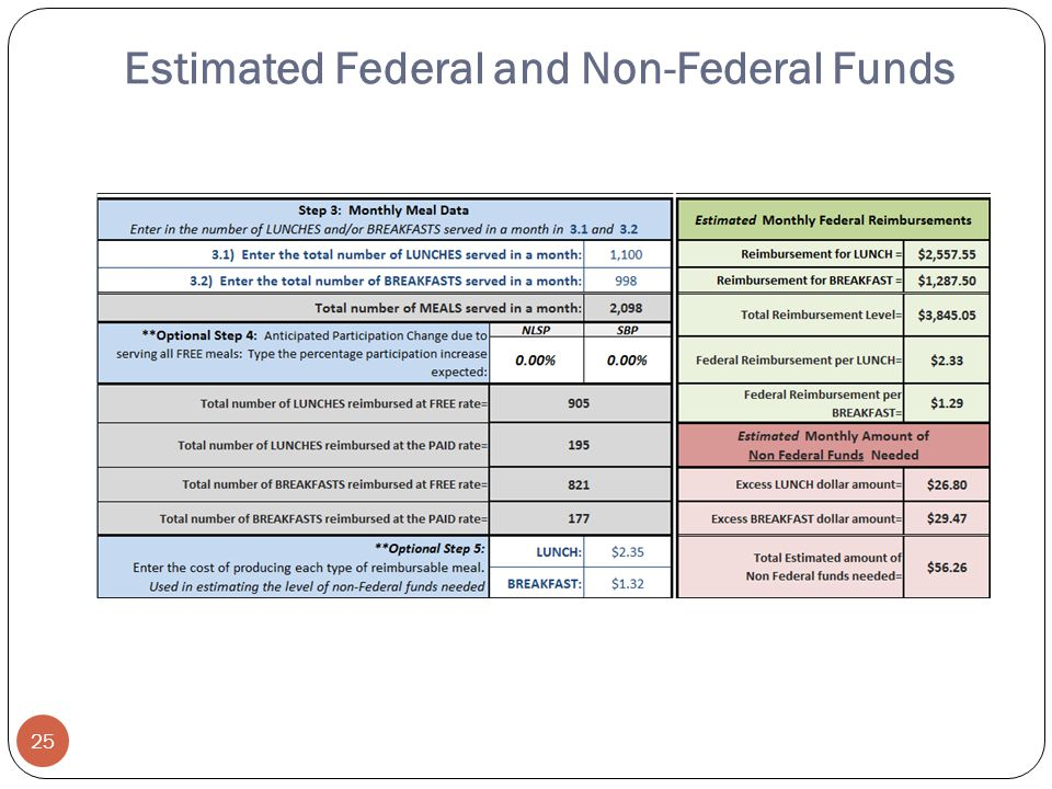 Estimated Federal and Non-Federal Funds 25