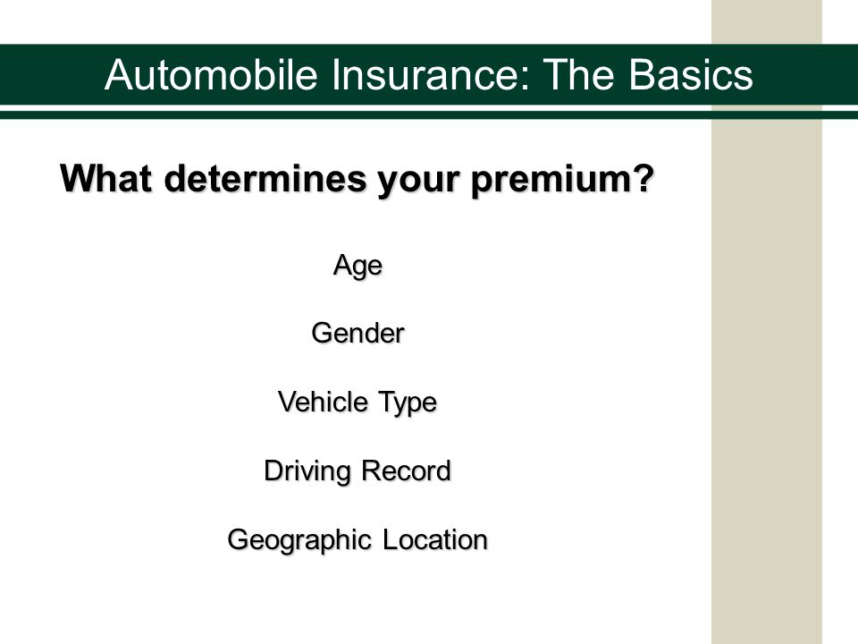 Automobile Insurance: The Basics What determines your premium.