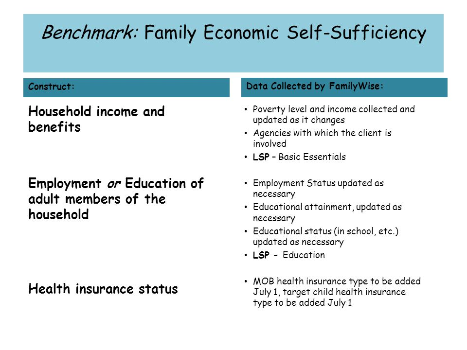 Benchmark: Family Economic Self-Sufficiency Construct: Household income and benefits Employment or Education of adult members of the household Health insurance status Data Collected by FamilyWise: Poverty level and income collected and updated as it changes Agencies with which the client is involved LSP – Basic Essentials Employment Status updated as necessary Educational attainment, updated as necessary Educational status (in school, etc.) updated as necessary LSP - Education MOB health insurance type to be added July 1, target child health insurance type to be added July 1