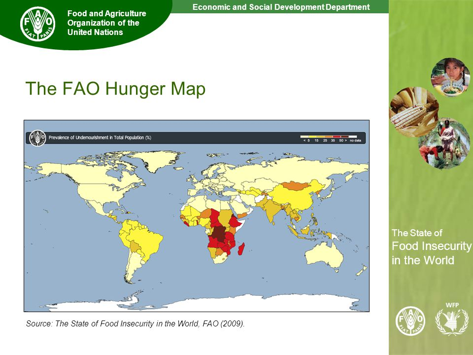 5 The State of Food Insecurity in the World Economic and Social Development Department Food and Agriculture Organization of the United Nations The State of Food Insecurity in the World The FAO Hunger Map Source: The State of Food Insecurity in the World, FAO (2009).