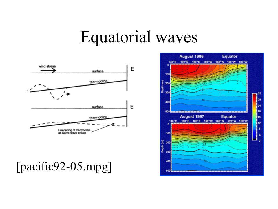 Equatorial waves [pacific92-05.mpg]