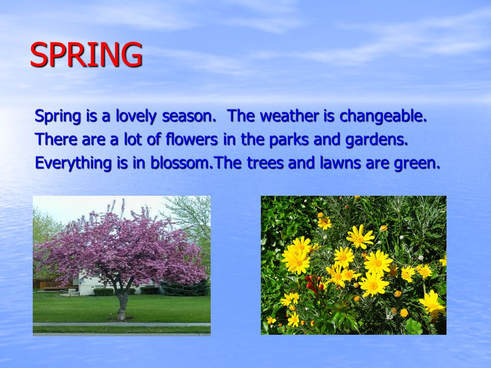 SPRING Spring is a lovely season. The weather is changeable.