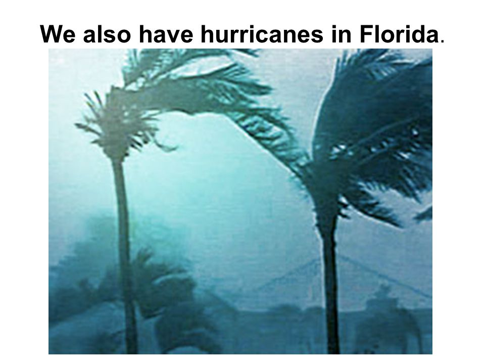 We also have hurricanes in Florida.