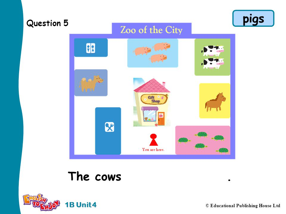 1B Unit 4 © Educational Publishing House Ltd Question 5 The cows are near the pigs. pigs