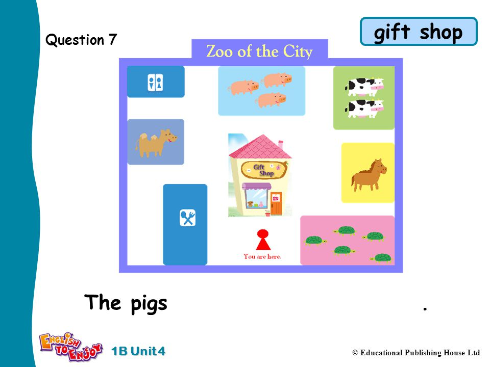 1B Unit 4 © Educational Publishing House Ltd Question 7 The pigs are behind the gift shop.