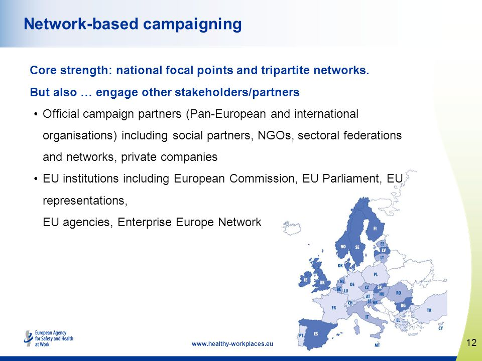 12   Network-based campaigning Core strength: national focal points and tripartite networks.