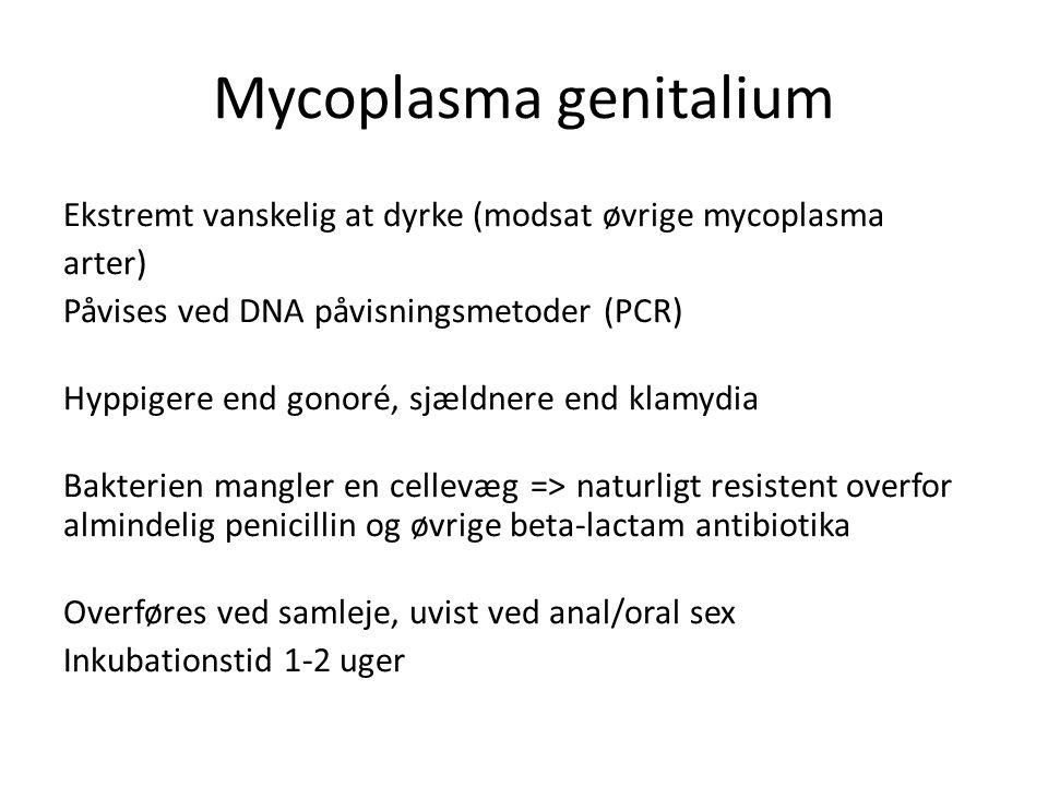 anal udladning efter kønibenholt milf pic