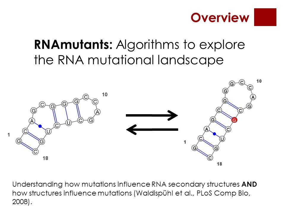 An unbiased adaptive sampling algorithm for the exploration