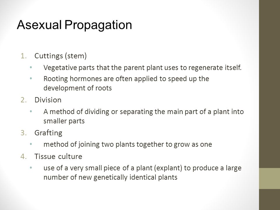 Asexual propagation hypothesis worksheet