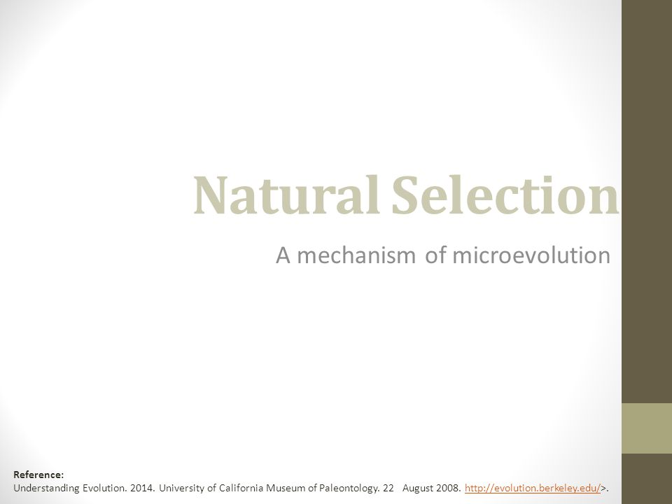 Natural Selection A Mechanism Of Microevolution Reference