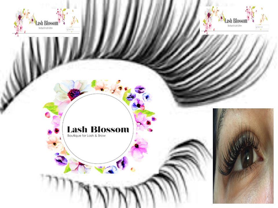 Lash Blossom Eyelash Extensions In Sydney Lashblossom Offerseyelash