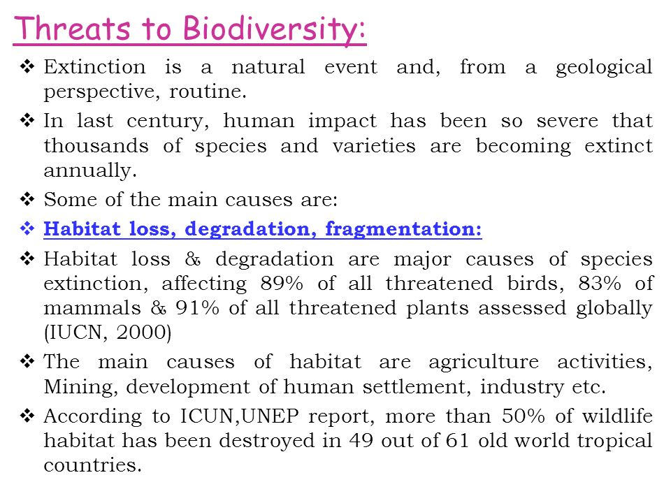  Extinction is a natural event and, from a geological perspective, routine.