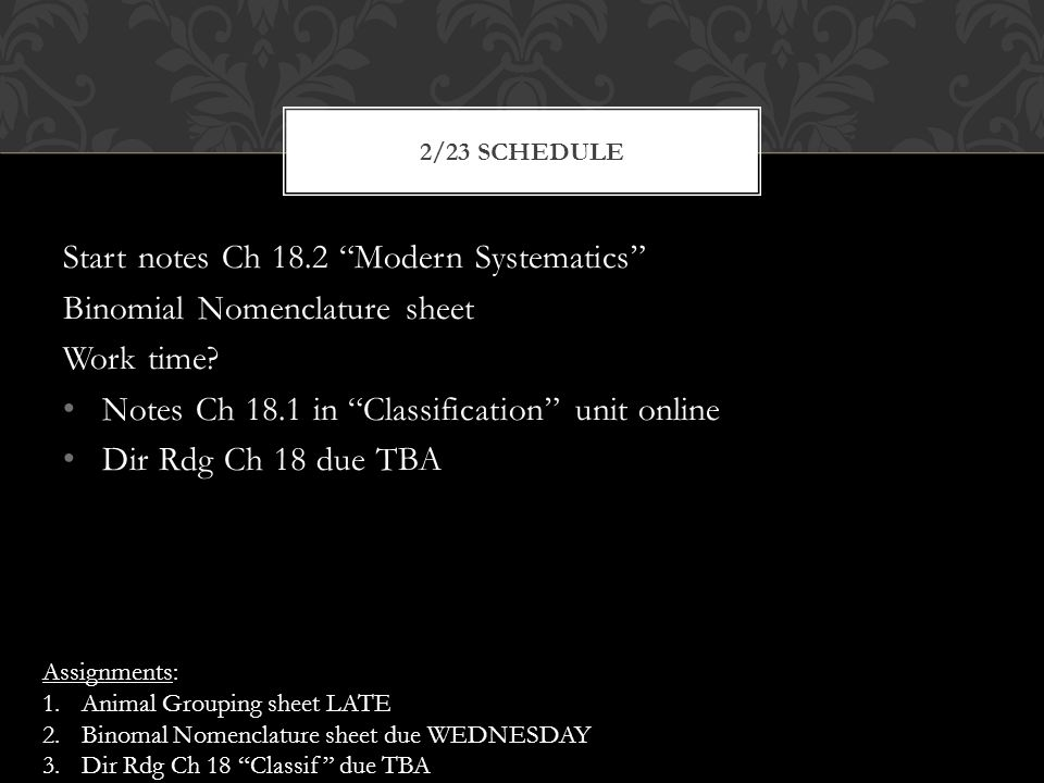 Start notes Ch 18.2 Modern Systematics Binomial Nomenclature sheet Work time.