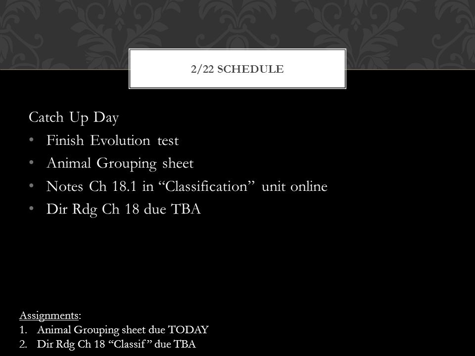Catch Up Day Finish Evolution test Animal Grouping sheet Notes Ch 18.1 in Classification unit online Dir Rdg Ch 18 due TBA 2/22 SCHEDULE Assignments: 1.Animal Grouping sheet due TODAY 2.Dir Rdg Ch 18 Classif due TBA