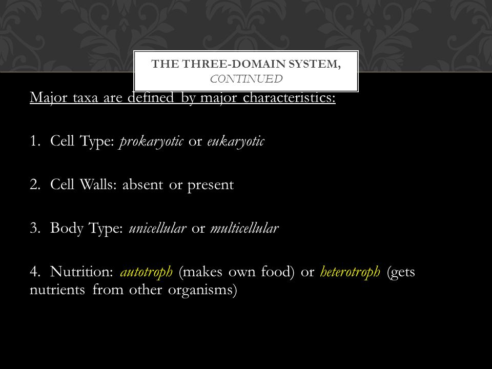 THE THREE-DOMAIN SYSTEM, CONTINUED Major taxa are defined by major characteristics: 1.