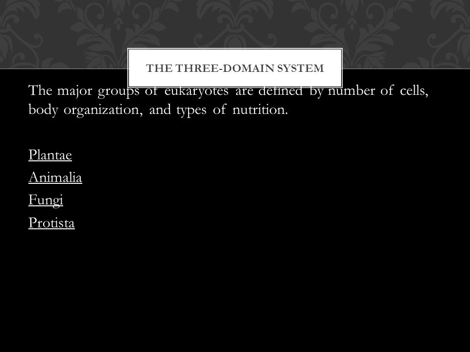 THE THREE-DOMAIN SYSTEM The major groups of eukaryotes are defined by number of cells, body organization, and types of nutrition.