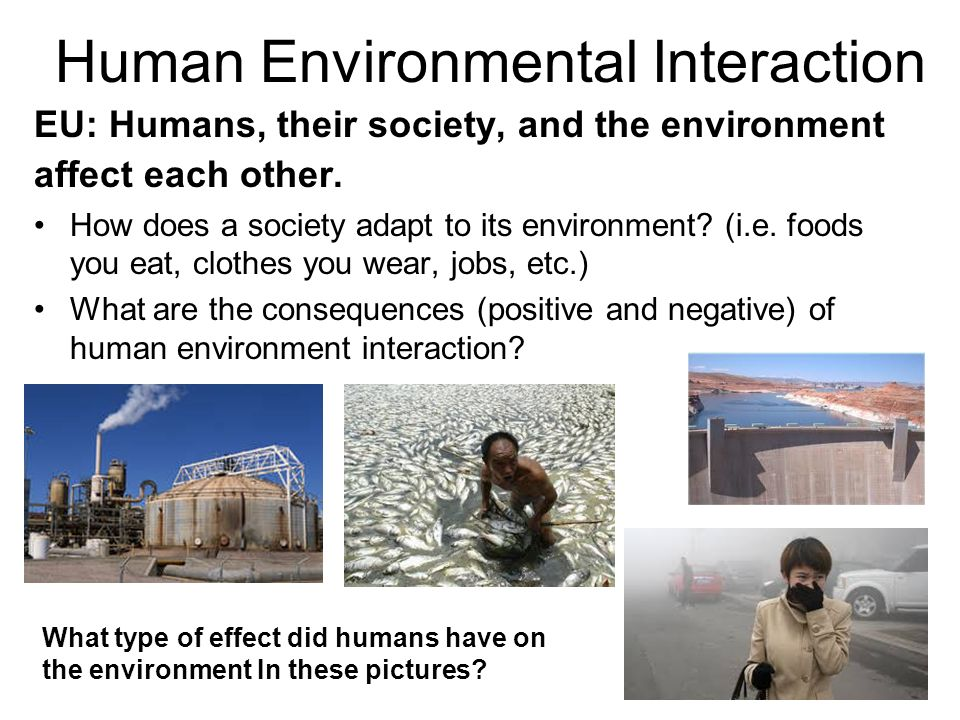 negative effects of human environment interaction