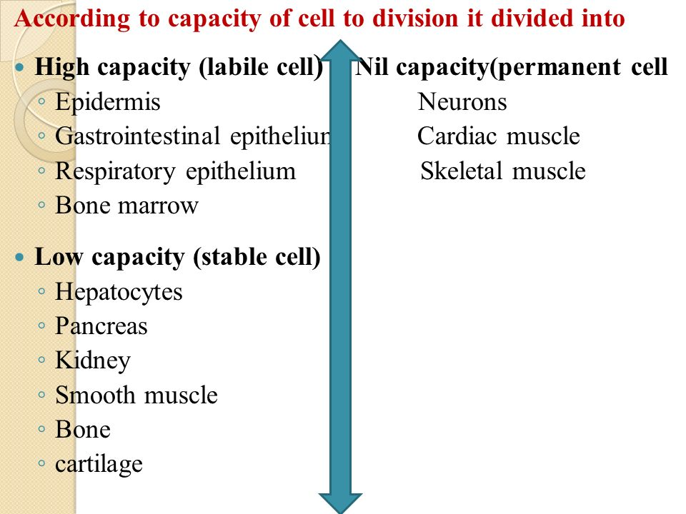 Typical examples of results of recordings from place cells in.