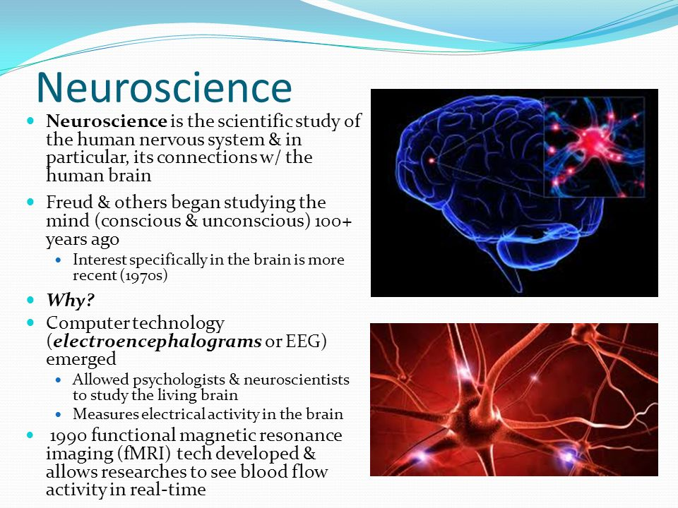 Cognitive Psychology  Neuroscience Neuroscience is the
