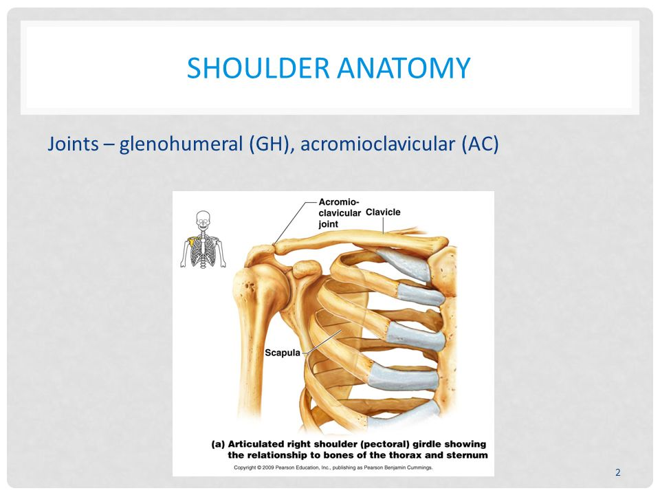 ARM IMPAIRMENTS AND RFC CONSIDERATIONS ORTHOPEDIC PROBLEMS IN THE ...