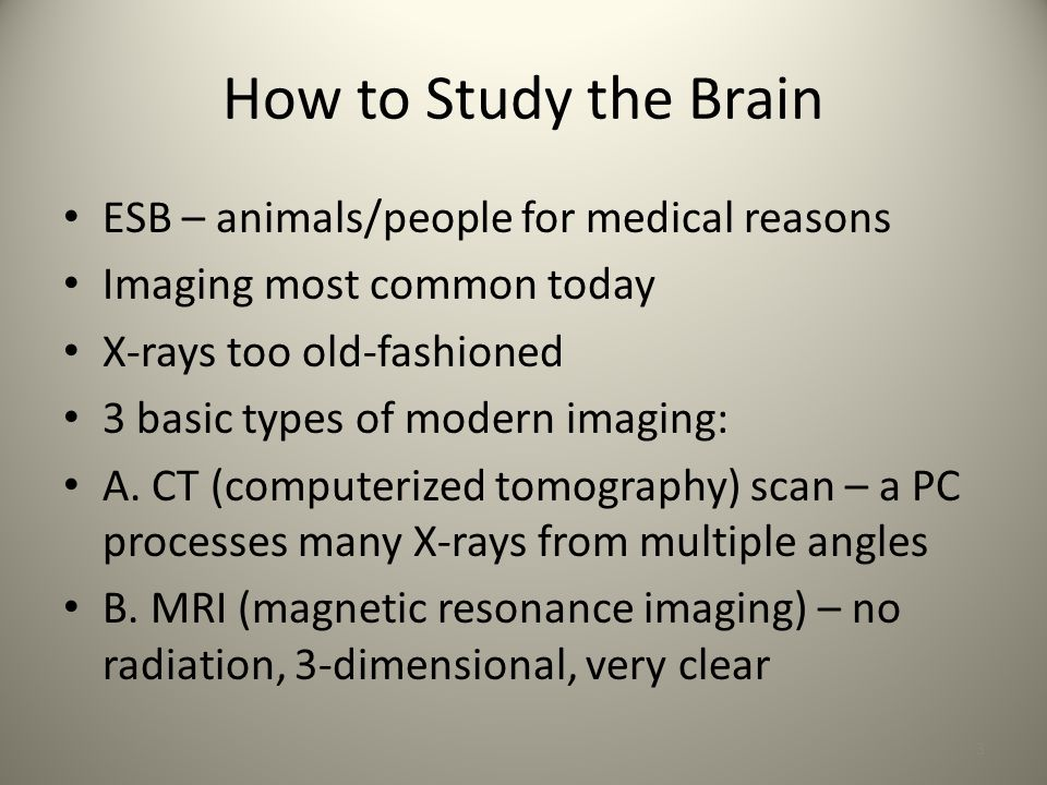 Chapter 3: Biology & Behavior continued 1. How to Study the Brain ...