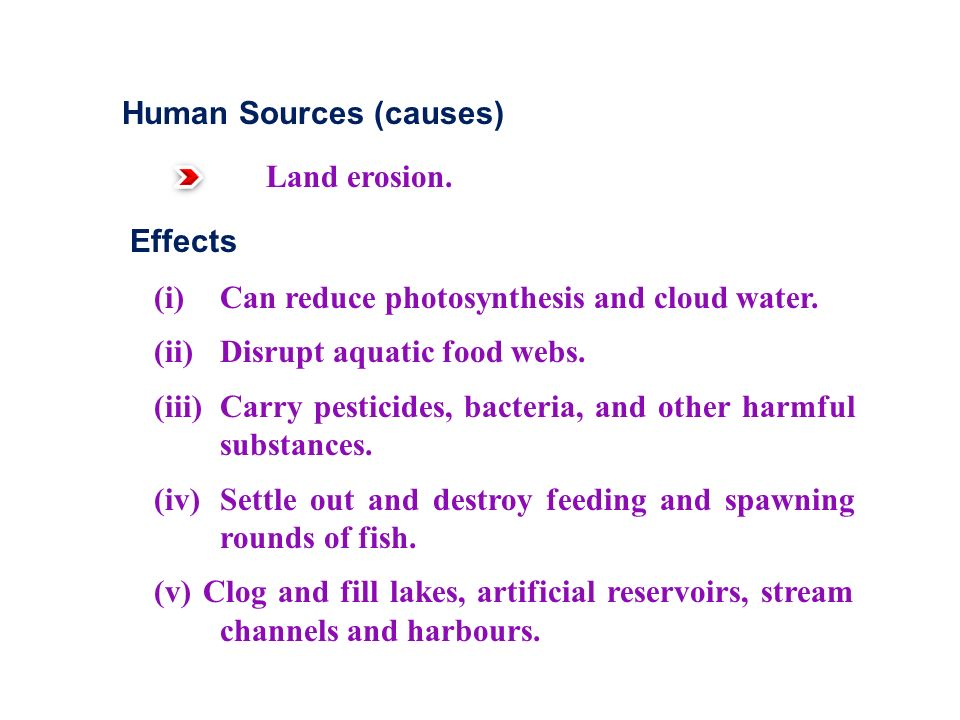 Human Sources (causes) Land erosion. Effects (i) Can reduce photosynthesis and cloud water.