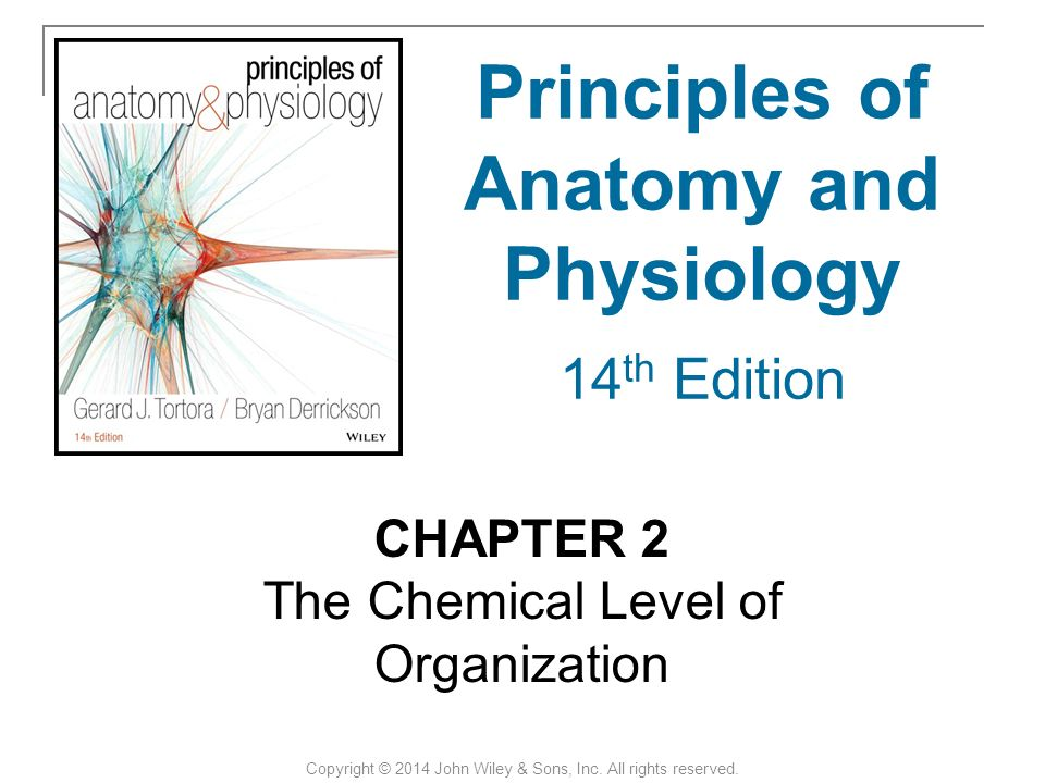 CHAPTER 2 The Chemical Level of Organization Copyright © 2014 John ...