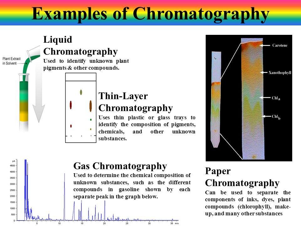 column chromatography spinach lab report
