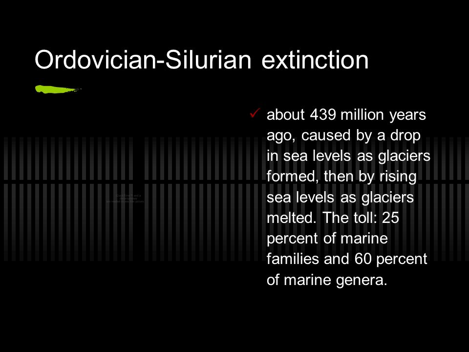 The Five Worst Extinctions in Earth's History  Ordovician